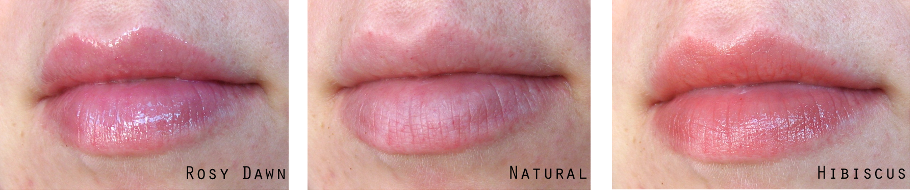 The Bees! OMG, The Bees! – Burt's Bees Lip Gloss in #233 ...